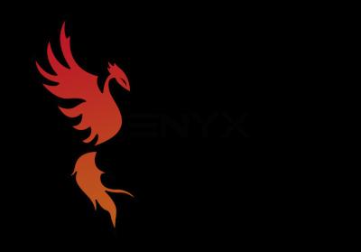Fundación Enyx, A.C.